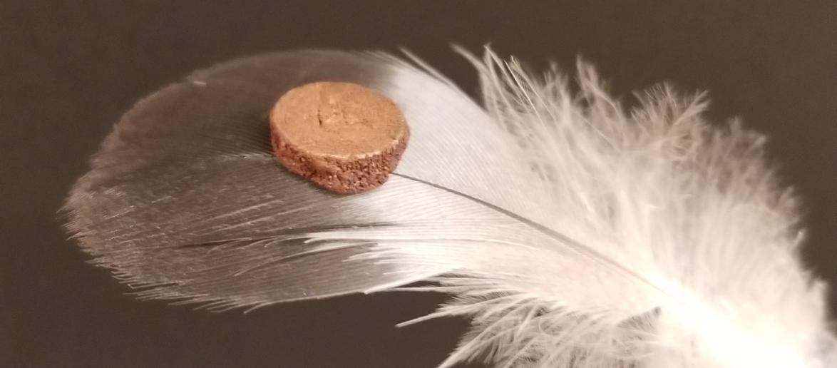 photo of foam mask balancing on feather